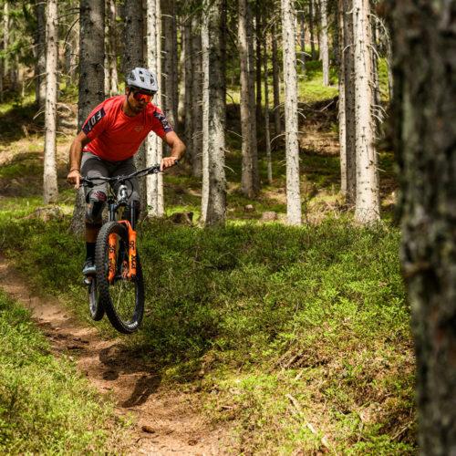 Wandbild No Shortcuts Mountainbike